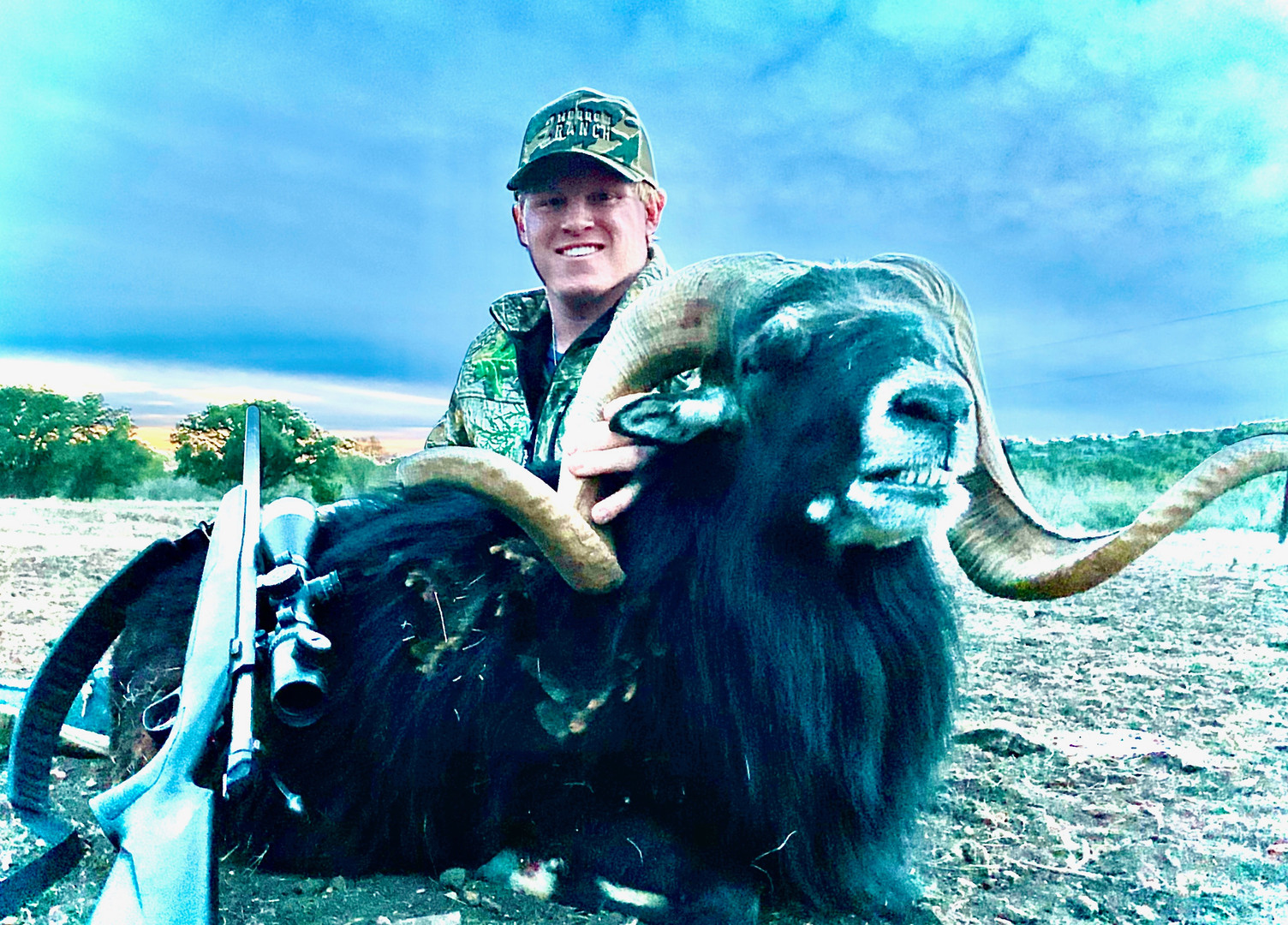 black-hawaiian-sheep-hunts-south-texas
