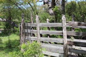 best-hill-country-hunting-ranch