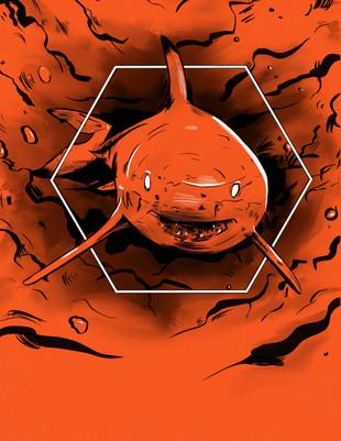 Shark Token Base Art