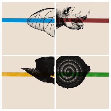 Extinction Project- Four Color Example
