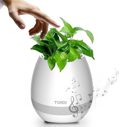 Music Office Plant Pot