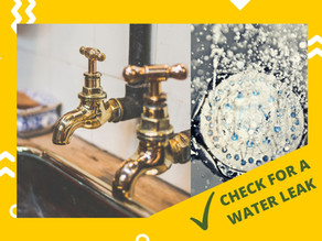 How to check for a water leak in your home?