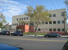 Einstein College of Medicine