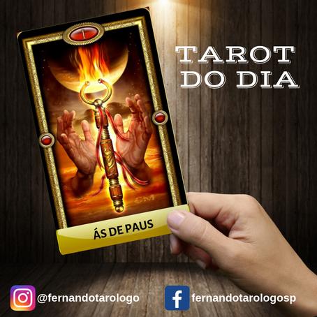 TAROT DO DIA 06/09/2019 - ÁS DE PAUS