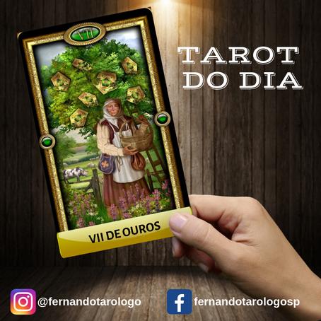 TAROT DO DIA 29/08/2019 - VII DE OUROS