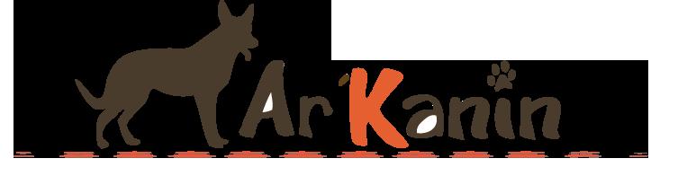 arkanin logo**