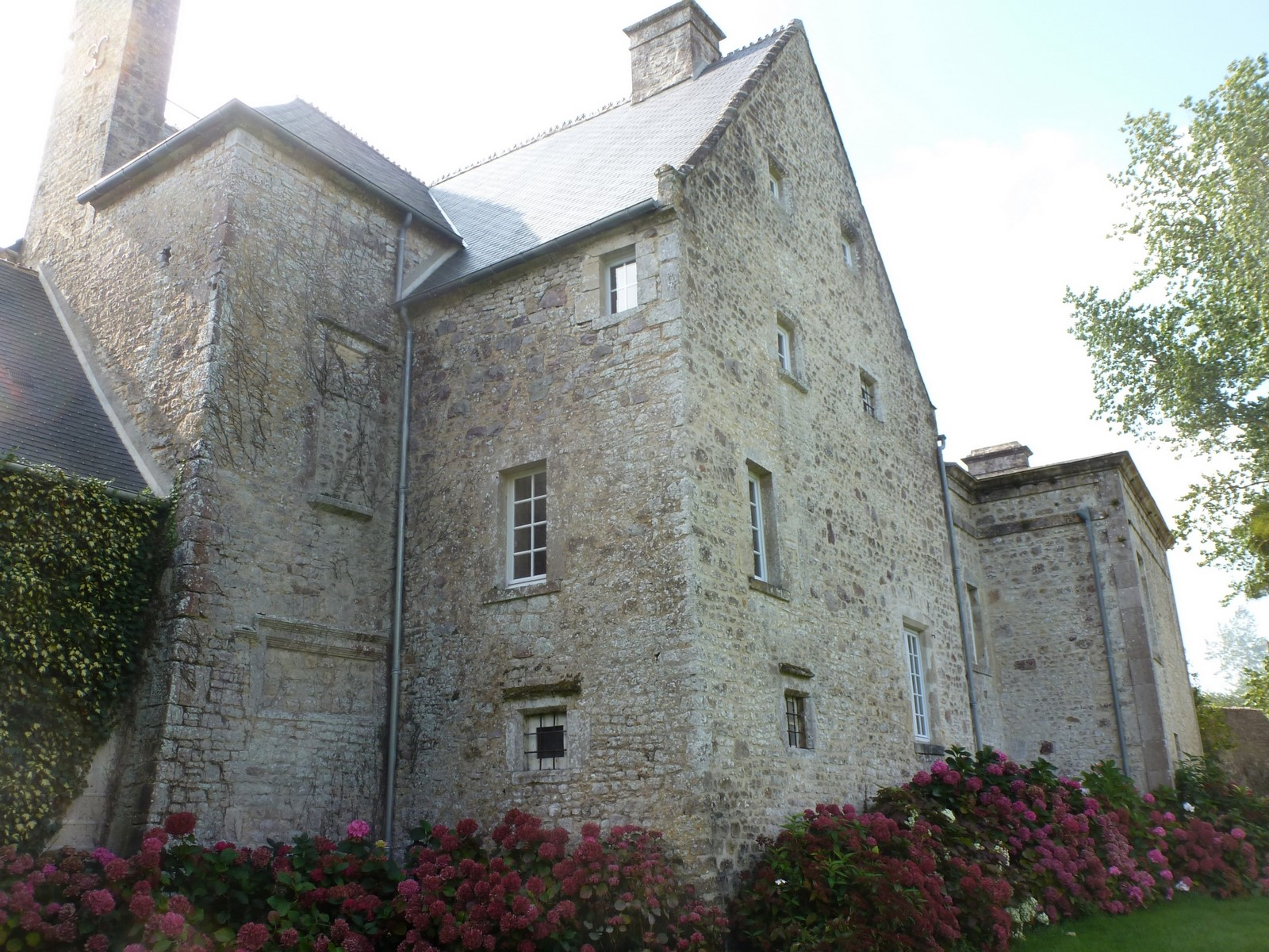 Back facing of manoir de savigny
