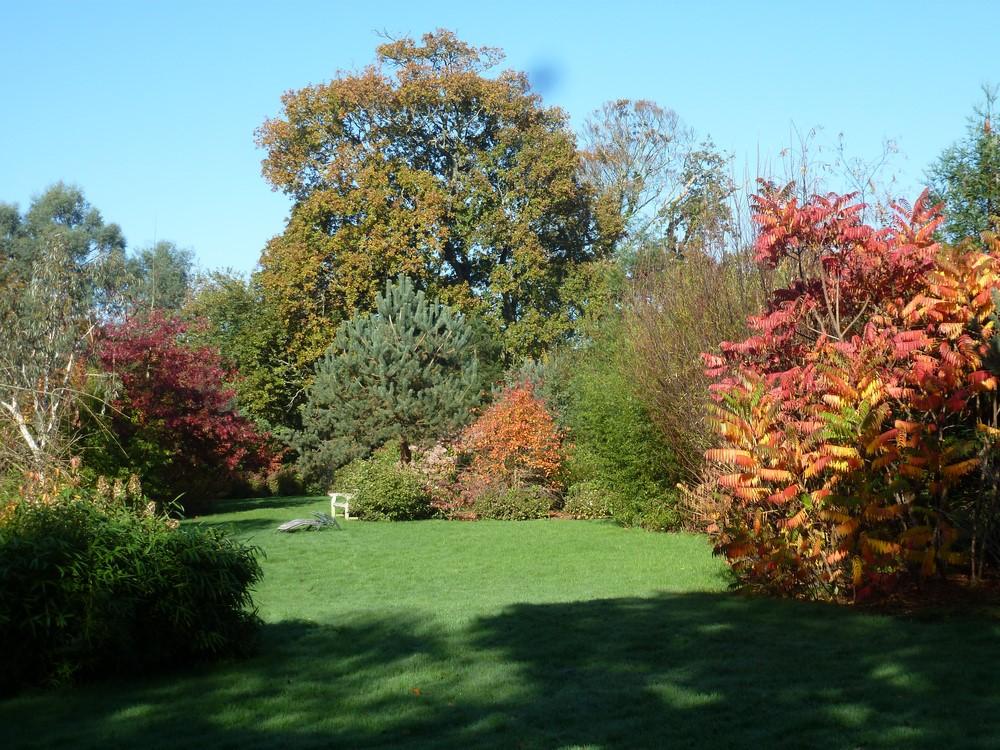 jardin_autonne1