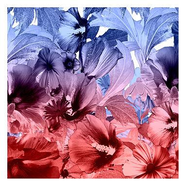Textil Druck,fashion print