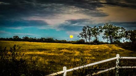 """""""Full Moon Rising"""""""