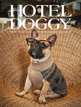 HOTEL DOGGY STYLING & ROOM/PROP