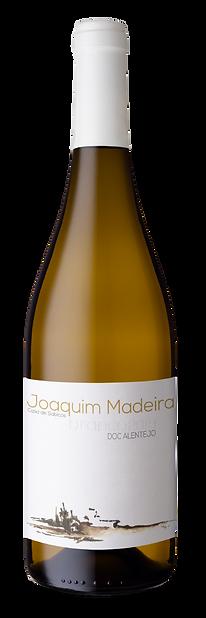 Joaquim_Madeira_Branco.png