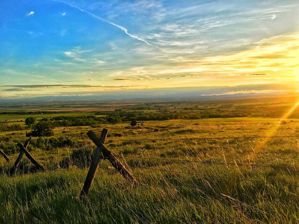 Meadow Sunset.jpg