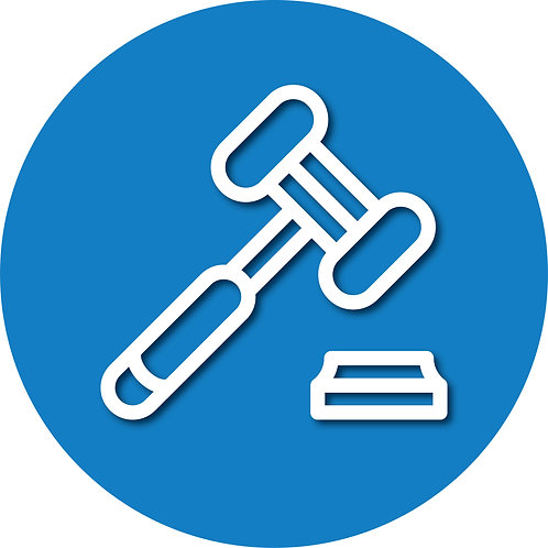 Legal Decision Making (Custody)/Parenting Time