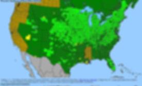 BONAP North American Plant Atlas