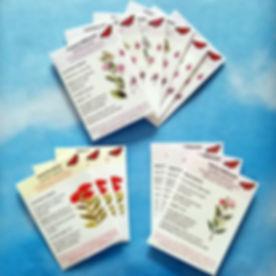 Custom Milkweed Seed Packets