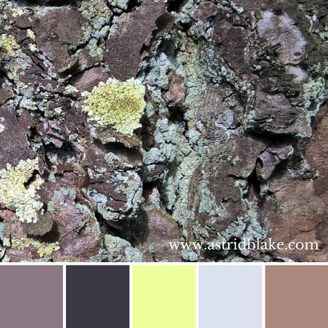 Astrid Blake close up photo, colour inspiration