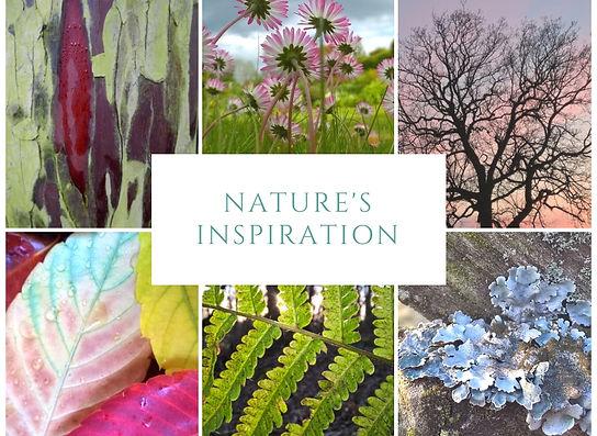 Nature's inspirtation workshop.jpg