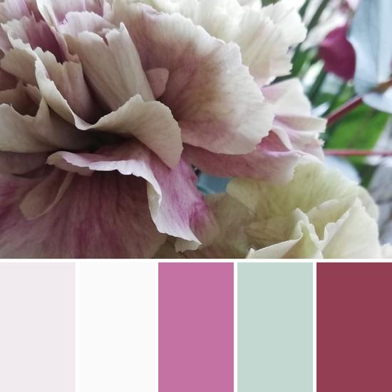 colour palette floral