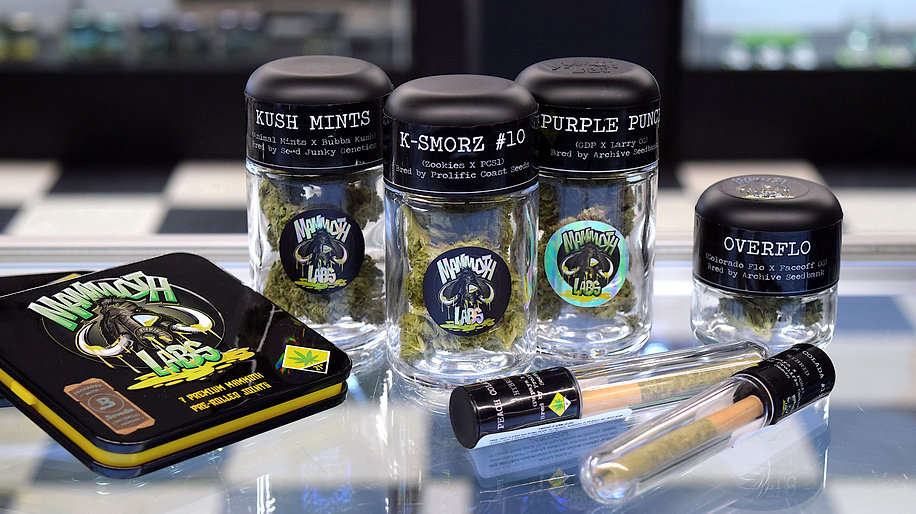 Mammoth Labs flower strains K'Smorz, GSC, Overflo, Purple Punch, Kush Mints