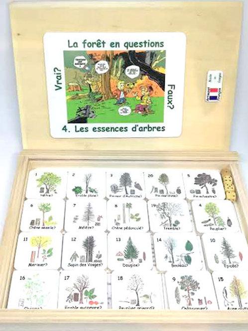 La forêt en questions - les essences d'arbres