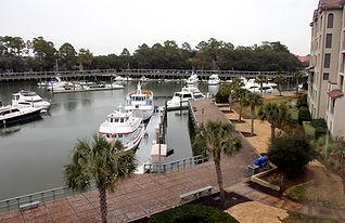 Yachts Shelter Cove Marina