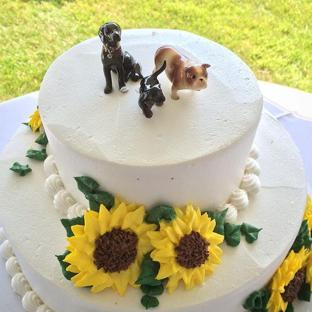 3 dog cake