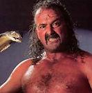 Jake The Snake Roberts.jpg