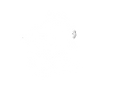 SnorkelheadLogo-Transparent-2.png