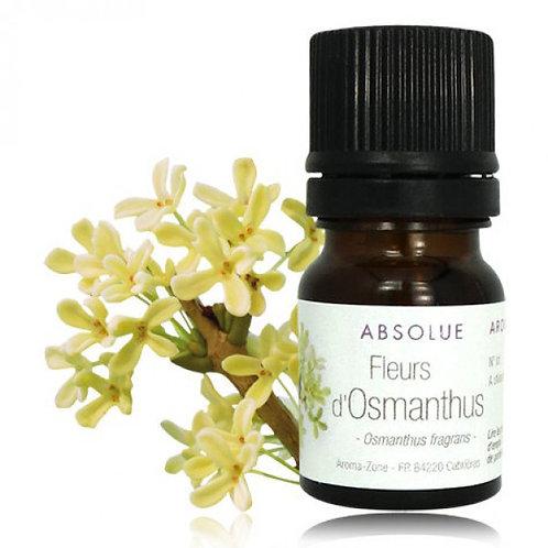 Абсолют Османтуса (Osmanthus fragrans)