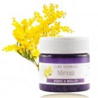 Цветочный воск Мимоза (Mimosa)