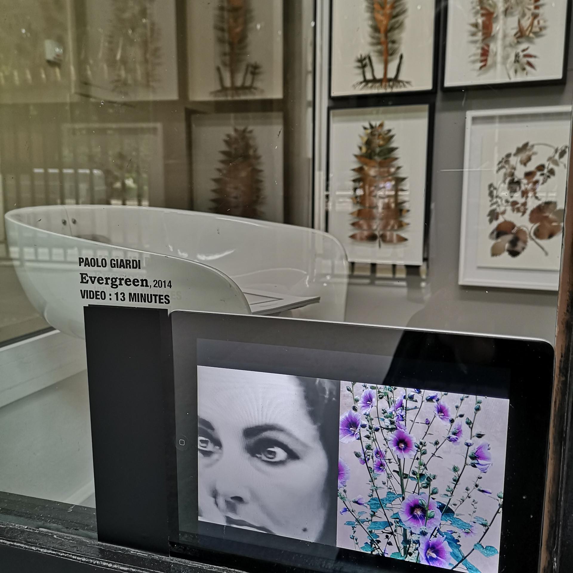 Studiolo #04, Galerie 3M2, Palais Royal, Paris 2018