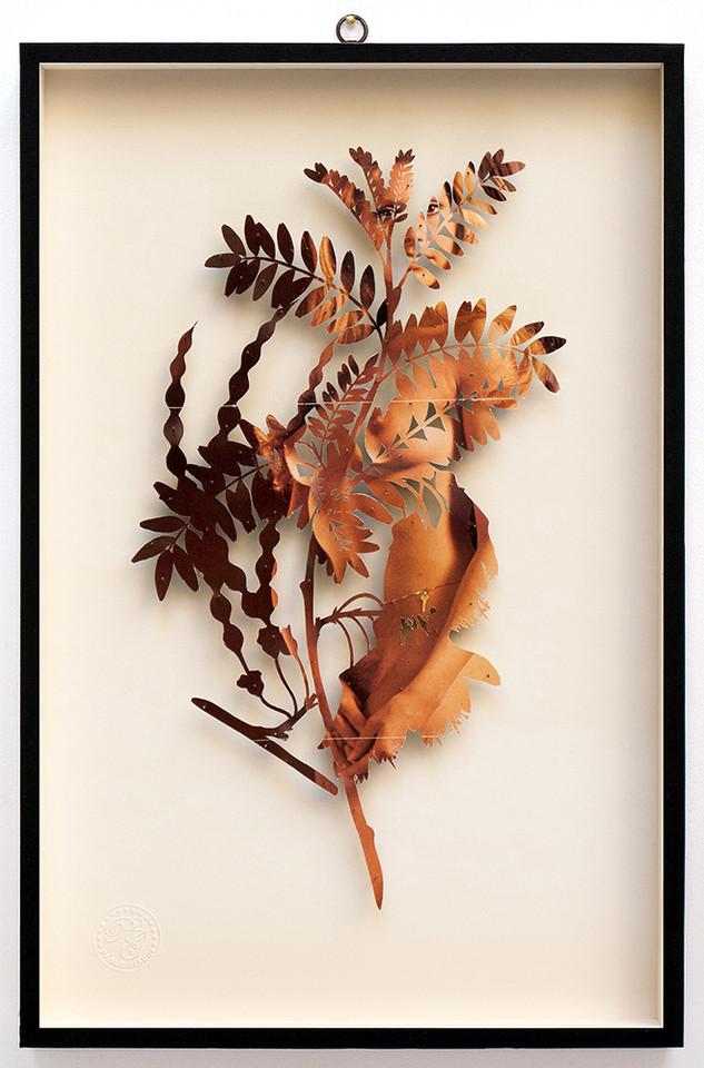 Plant CI