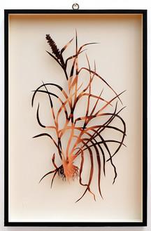 Plant CIII