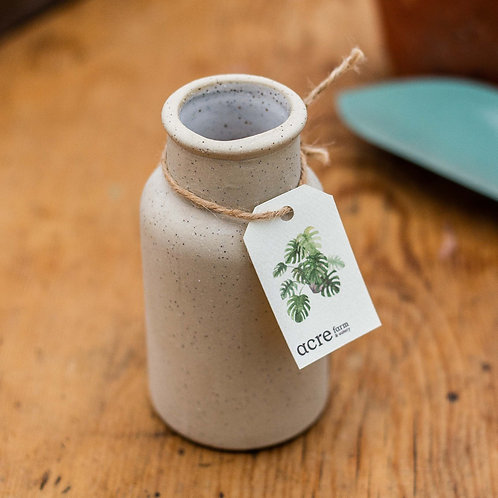 Kim Wallace Ceramics milk urn vase - oatmeal