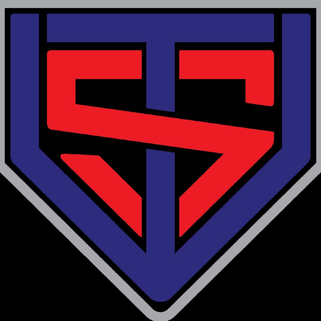 Baseball Mitzvah Logo