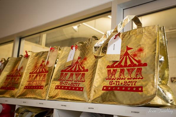 Circus Mitzvah Favor Bags Gold Foil