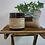 Thumbnail: Peppermint Eucalyptus