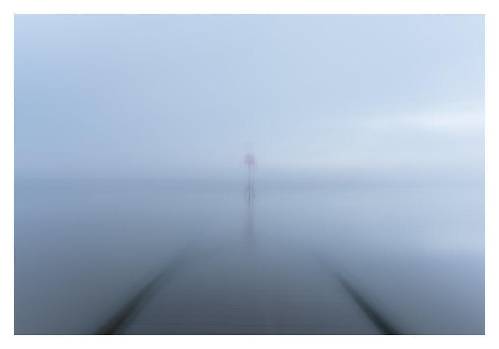 misty_.jpg