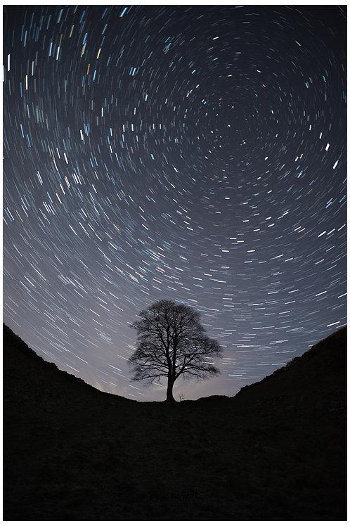 sycamore gap star trails