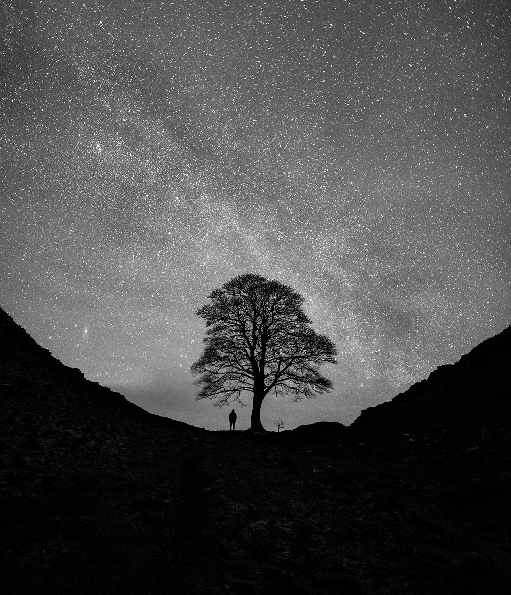 A SKY FULL OF STARS OVER SYCAMORE GAP