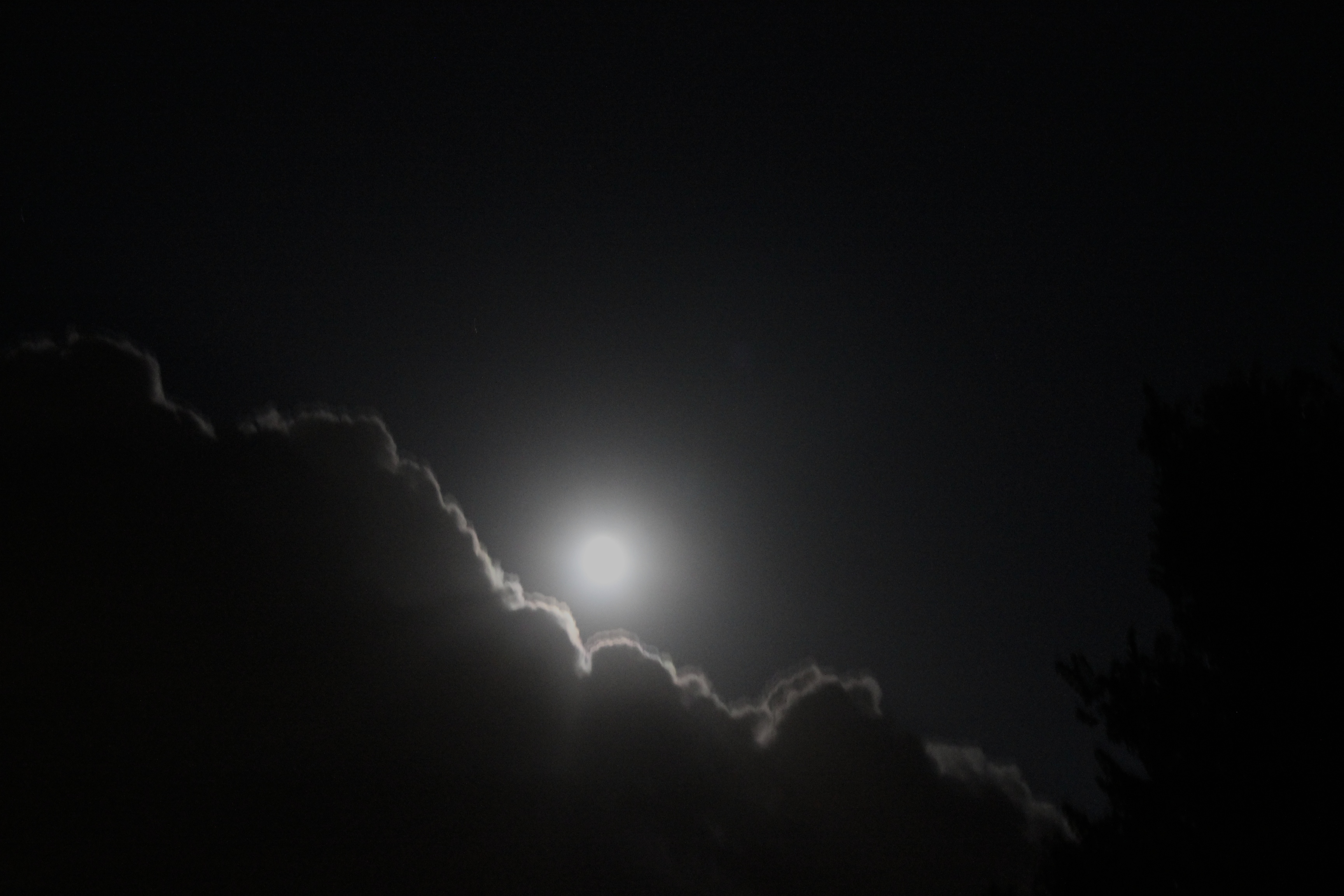 Flickr - Supermoon