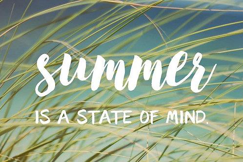 Summer School Series