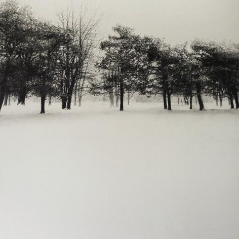 Winter Lines: Armin Mersmann
