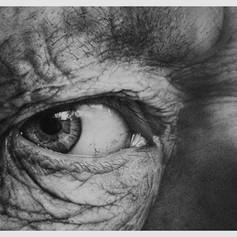 Through the Iris III: Armin Mersmann