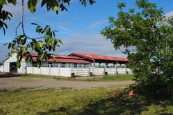barm paddocks and covered arena