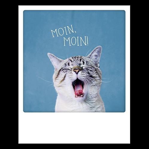 Karte – Moin, Moin