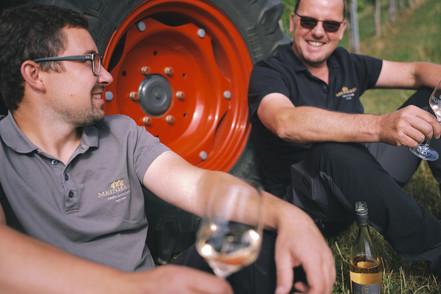 Matthias Schabler und Steffen Meinhard in den Weinbergen