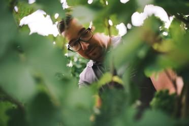 Matthias Schabler im Weinberg