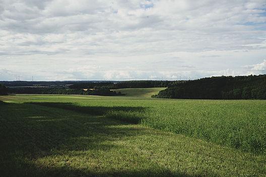 biohof-weckmueller-felder-1.jpg